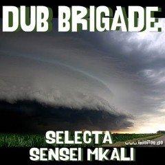 IIP006 [DUB] DUB BRIGADE EPISODE #3 – SELECTA SENSEI MKALI