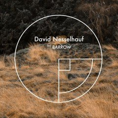 "David Nesselhauf ""The Barrow"" (Enorme Tonträger)"