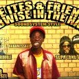 Feat.: Toppa IrieItes, Coltjah, No More Trouble, Babamessage, Supa Tank  – Nice Vibez!