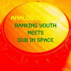 """Dub in Space meets Ranking Youth – """"Analogue Vibes"""" (2012)"""