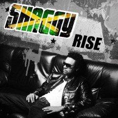 "Shaggy ""Rise"" (Embassy of Music)"