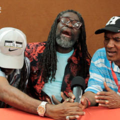 The Mighty Tamlins Interview @ Reggaejam 2013