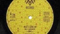 """Well Jahdgment / Donovan Kingjay """"What's Going On"""" / """"Willie Lynch"""" – 12 Inch (A.M. Records – 2016) Well Jahdgment (von Moa Anbessa aus Italien) dürfte mindestens seit der 2008 […]"""