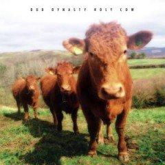 "Dub Dynasty ""Holy Cow"" (Steppas Records)"