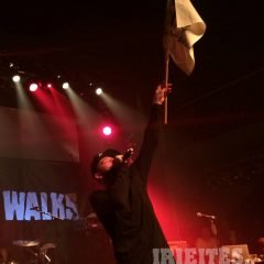 25 Jahre Silly Walks – We Salute!