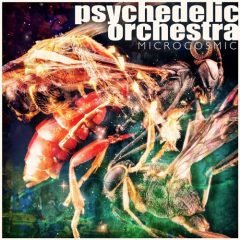 """Psychedelic Orchestra """"Microcosmic"""" (Squinty Bass)"""