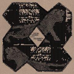 Social Sounds Presents Solidarity Dubs (Social Sounds From Planet Dub)