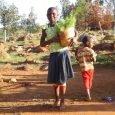 Hildesheimer Wald für Tanzania Im Januar 2014 veröffentlichten wir hier bei IrieItes.de ein Interview mit Doc Thosch aka Thomas Sklorz, einem der Macher hinter dem Aufforstungsprojekt in Tanzania. Regelmäßig wird […]