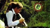 """Augustus Pablo """"King David's Melody (Expanded)"""" (Greensleeves – 2017) Augustus Pablo war zweifelsohne eine der bedeutendsten Persönlichkeiten, die es im Reggae bislang gegeben hat. Ein Meister an der Melodika und […]"""