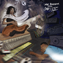 """Mad Professor meets Jah9 """"In The Midst Of The Storm"""" (VP Records)"""