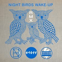 """Night Birds Wake Up"" Remixes feat. KTOPP, Dubios & I​-​Bogle – Free Download!"