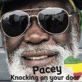 """Pacey """"Knocking On Your Door"""" (Satta Dub Records – 2018) Pacey, mit bürgerlichem Namen Wallen Earl Rickett, wurde in der Gemeinde Clarendon im Süden Jamaikas geboren. Er wuchs mit Everton..."""