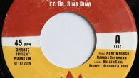 "Pacey feat. Dr. Ring Ding ""Joy And Pleasure"" – 7 Inch (Ancient Mountain Records – 2019) Im vergangenen Jahr flatterte mir das Album ""Knocking On Your Door"" von Wallen Earl..."