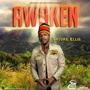 """Natur Ellis """"Awaken"""" (Preserve Nature Entertainment – 2020) Er liebt die Natur und die Menschen und hat sich ganz dem Frieden verschrieben. Nicht umsonst wird er auch Prince of Peace..."""