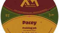 """Pacey """"Praising Jah""""/""""Ethiopia Is Calling For Peace"""" – 10 Inch (Ancient Mountain Records – 2020) Es gibt vergleichsweise wenige Label, die sich noch trauen, Vinyl auf den Markt zu bringen...."""