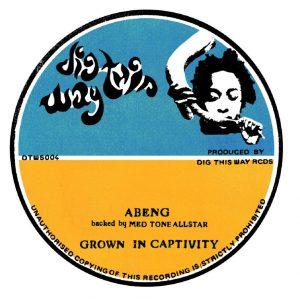 """Abeng meets Med Tone All Stars """"Grown In Captivity"""" (Dig This Way Records – 2020) Manchmal braucht es, wie bei diesem Release auf dem italienischen Label """"Dig This Way Records"""",..."""