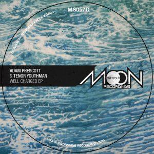 """Adam Prescott & Tenor Youthman """"Well Charged EP"""" – 12 Inch (Moonshine Recordings – 2020) Kurz vor dem Ende dieses äußerst merkwürdigen Jahres schickt Moonshine Recordings aus Polen eine letzte […]"""